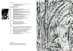 Valy Katalog 2010 Publikationen